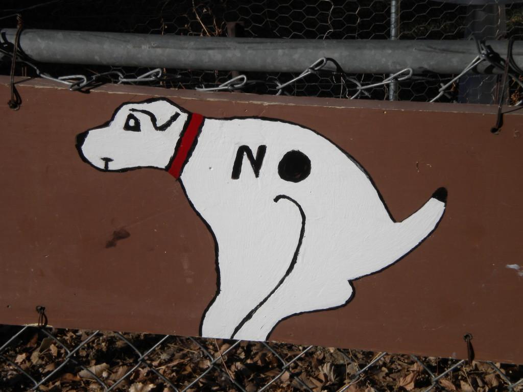 Bad dog!!!