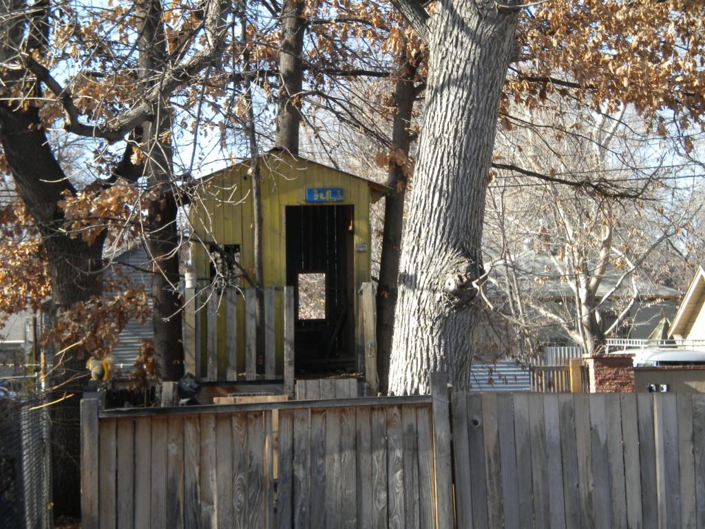 Tree house # 3