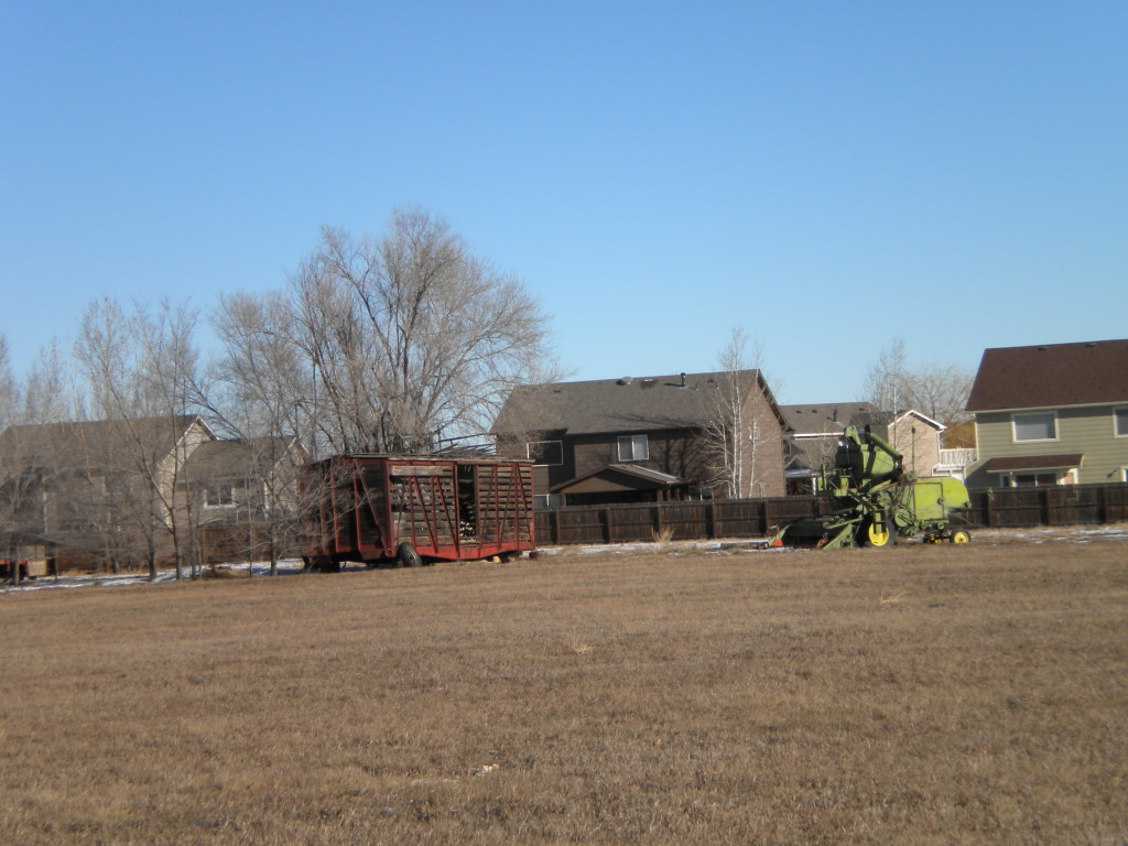 Bucolic  scene # 1 --- railway car, shed, and combine