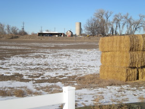 Bucolic scene # 4 -- a lot of hay, far-off silo
