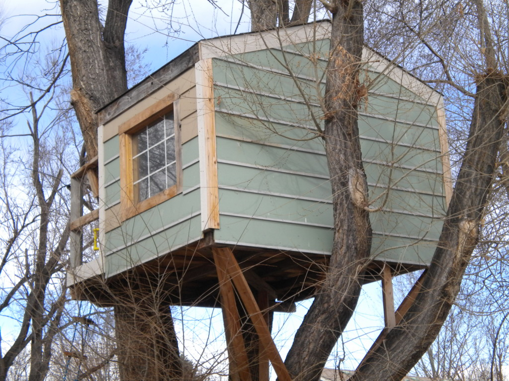 treehouse of the day