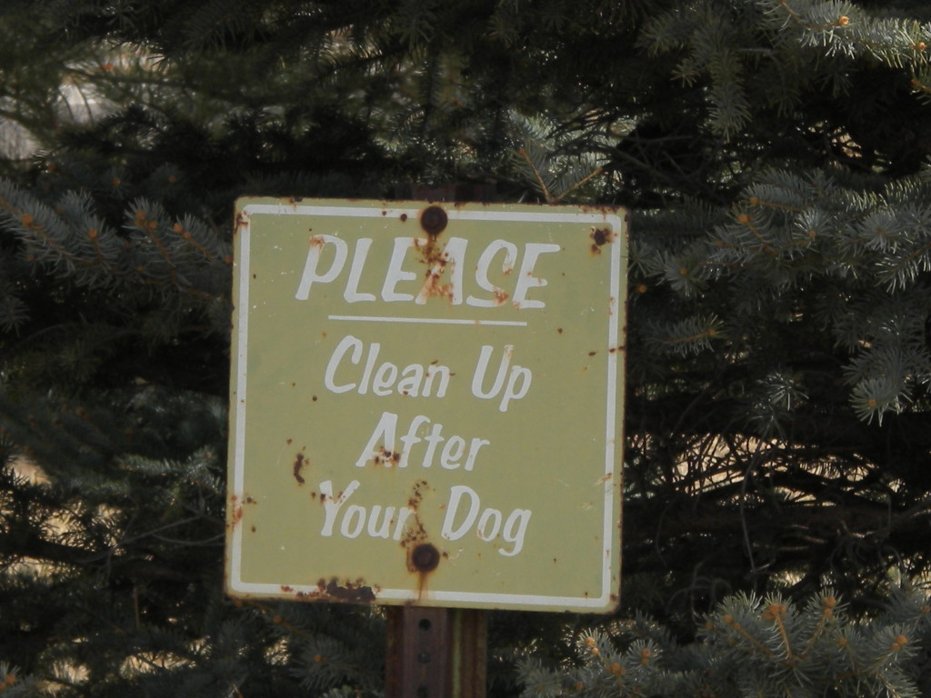 I seem to have an affinity for these 'dog poop' signs