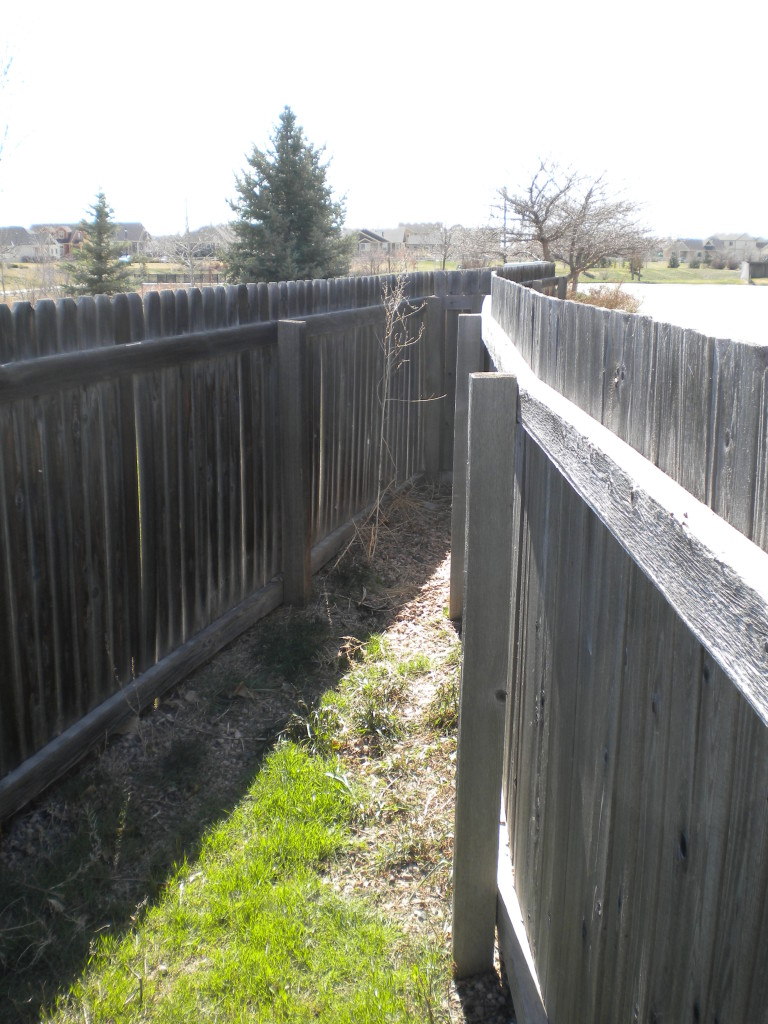 an amazingly tapered back yard fence