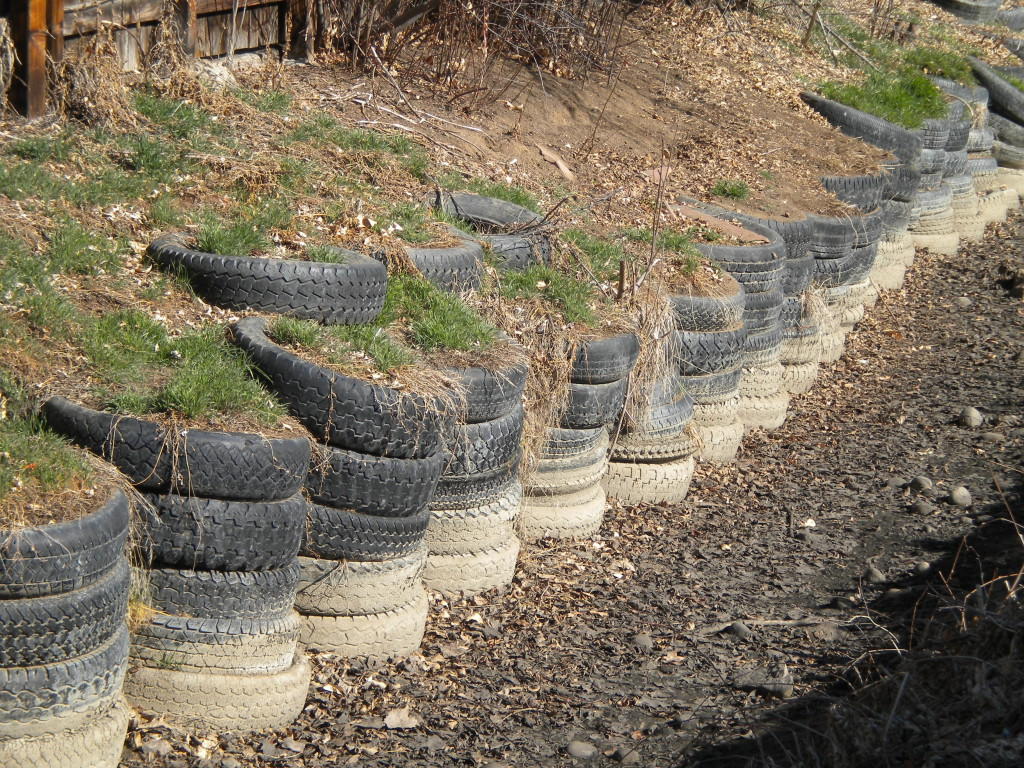 Recycled tires along the Longmont Supply Ditch