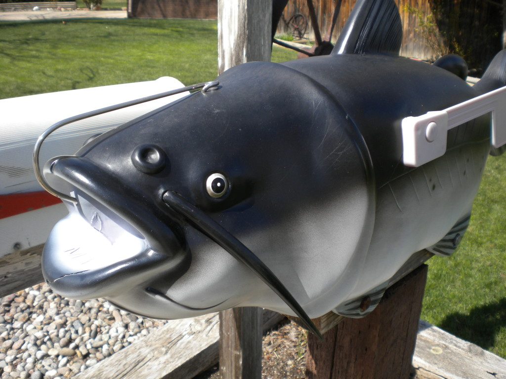 Another piscine mail box