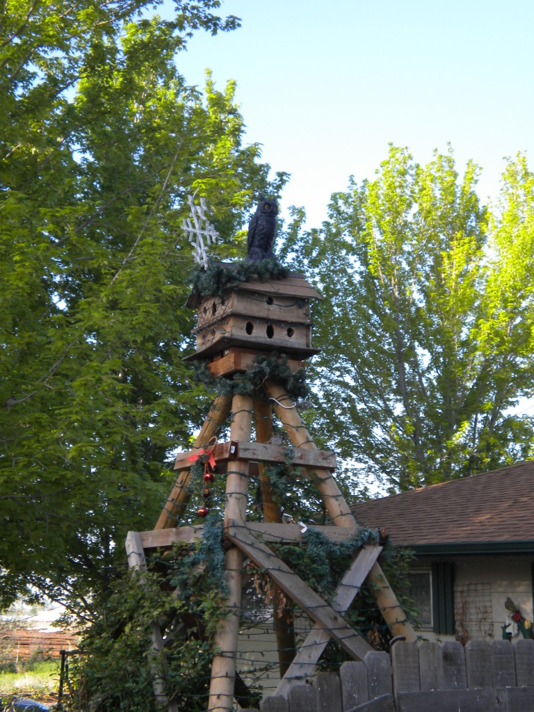 Birdhouse of the day (maybe of the year!)