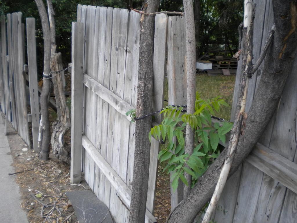 Cobbled-together fence