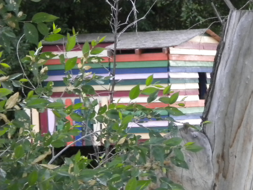 rainbow tree house