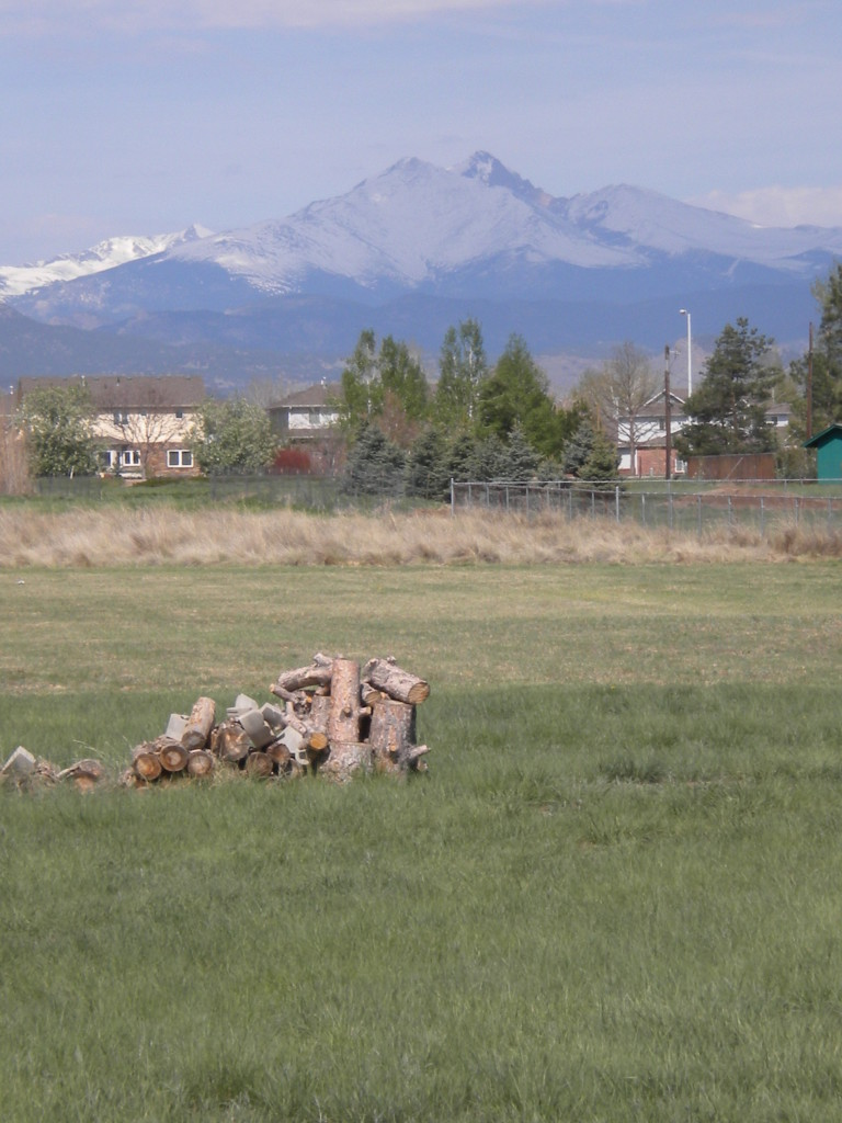 Long's Peak and wood pile
