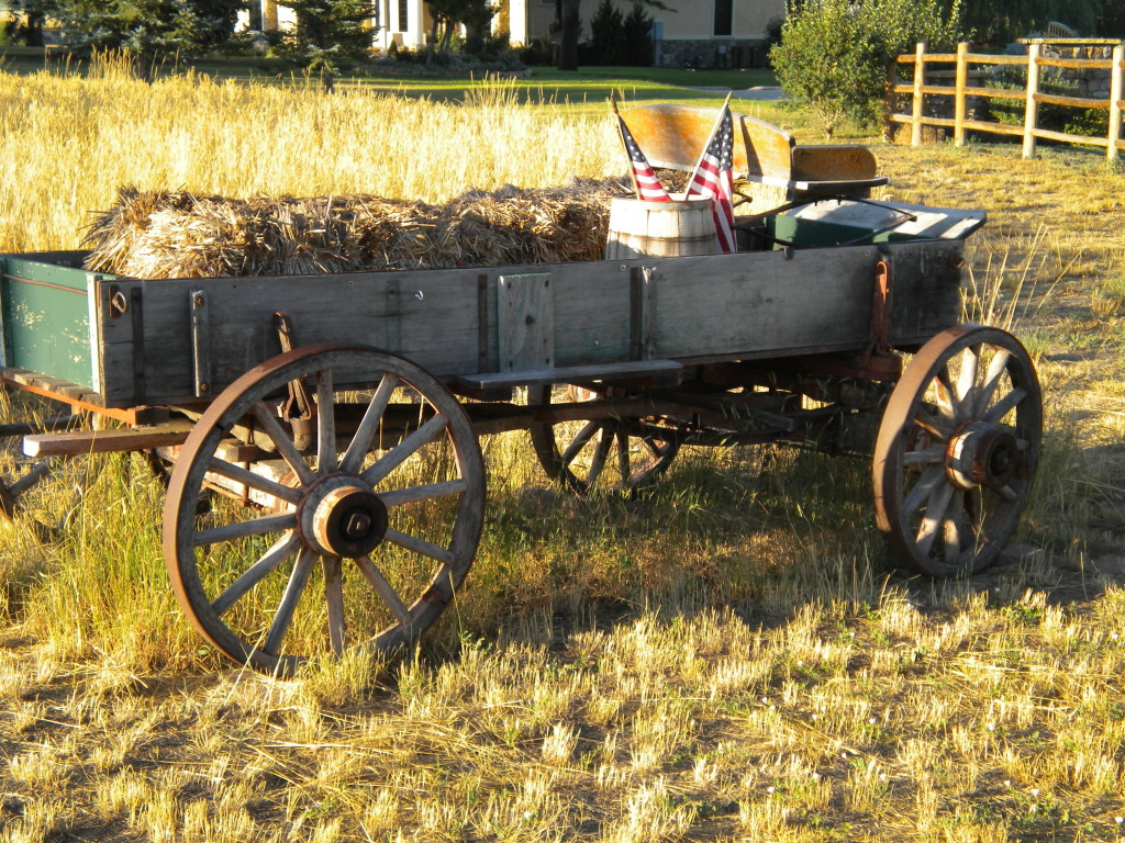 Wagon south of Plateau