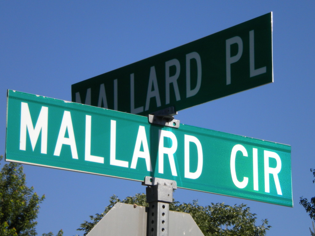 Intersection of Mallard and Mallard