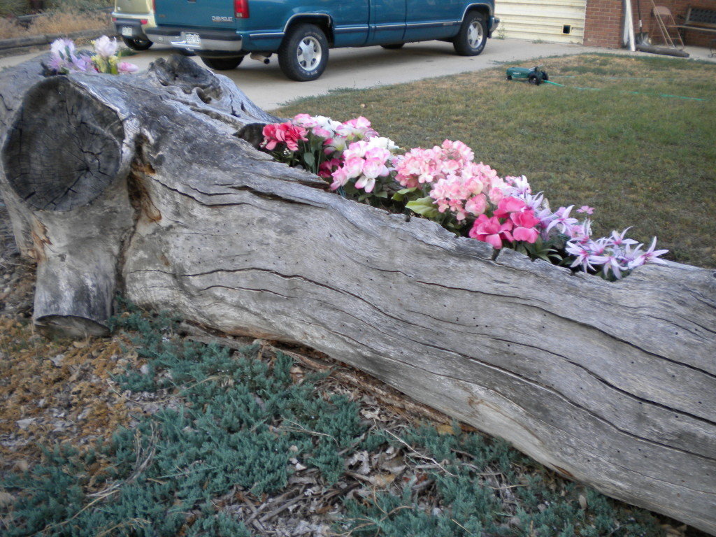 tree trunk flower box