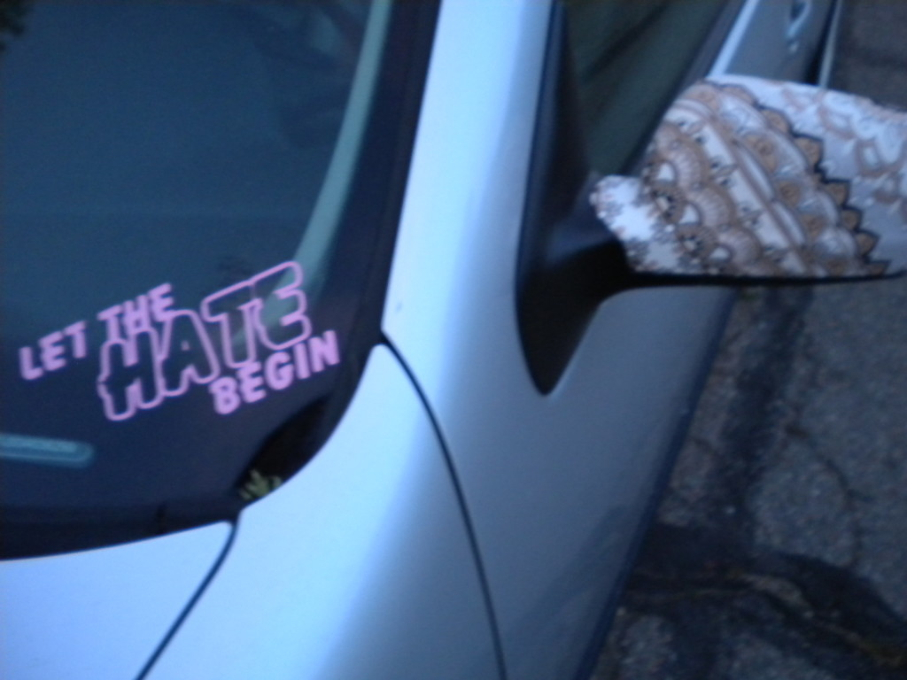 not sure what this refers to... interesting side mirror cover,  though