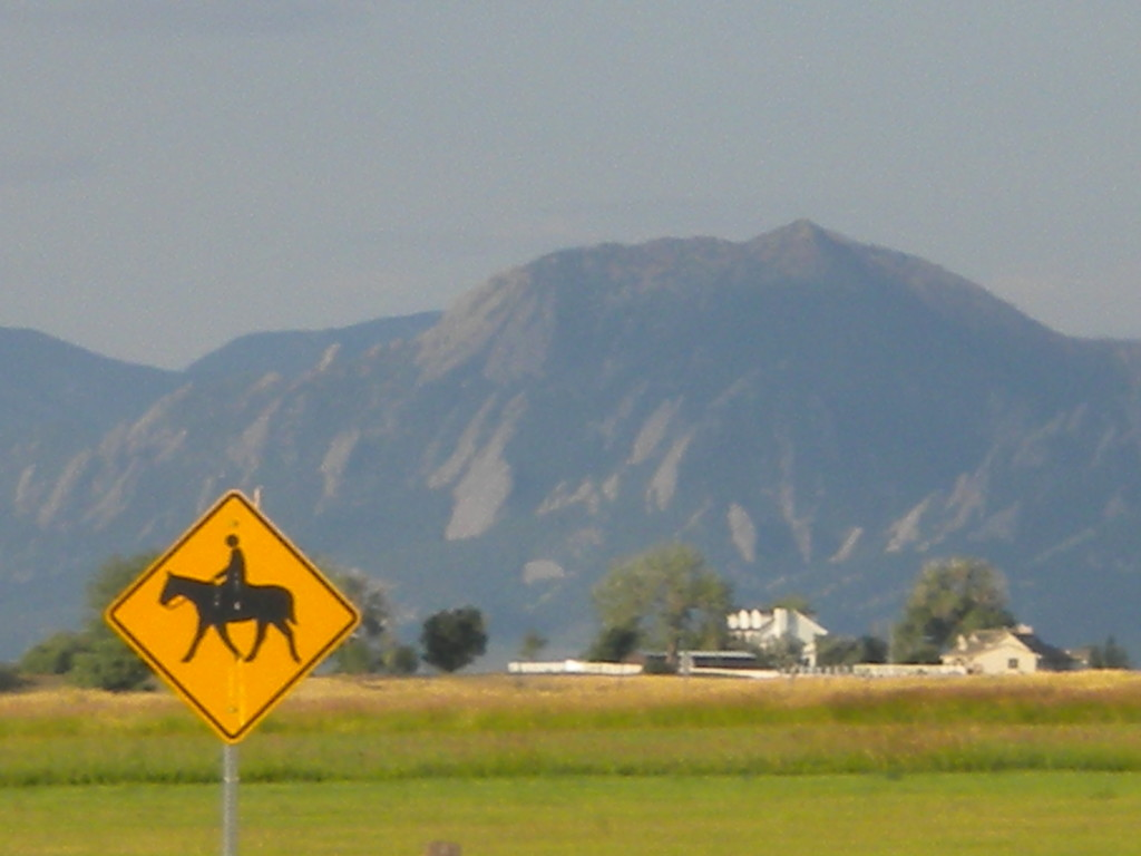 horse with flatirons