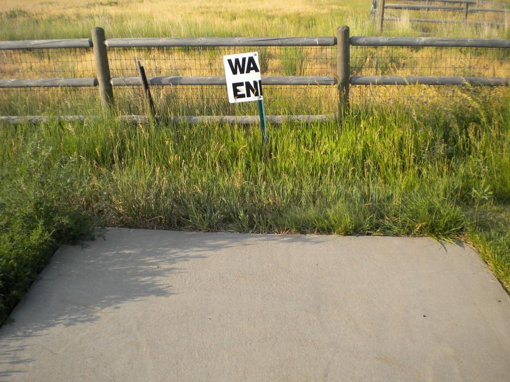 Walk Ends (???)