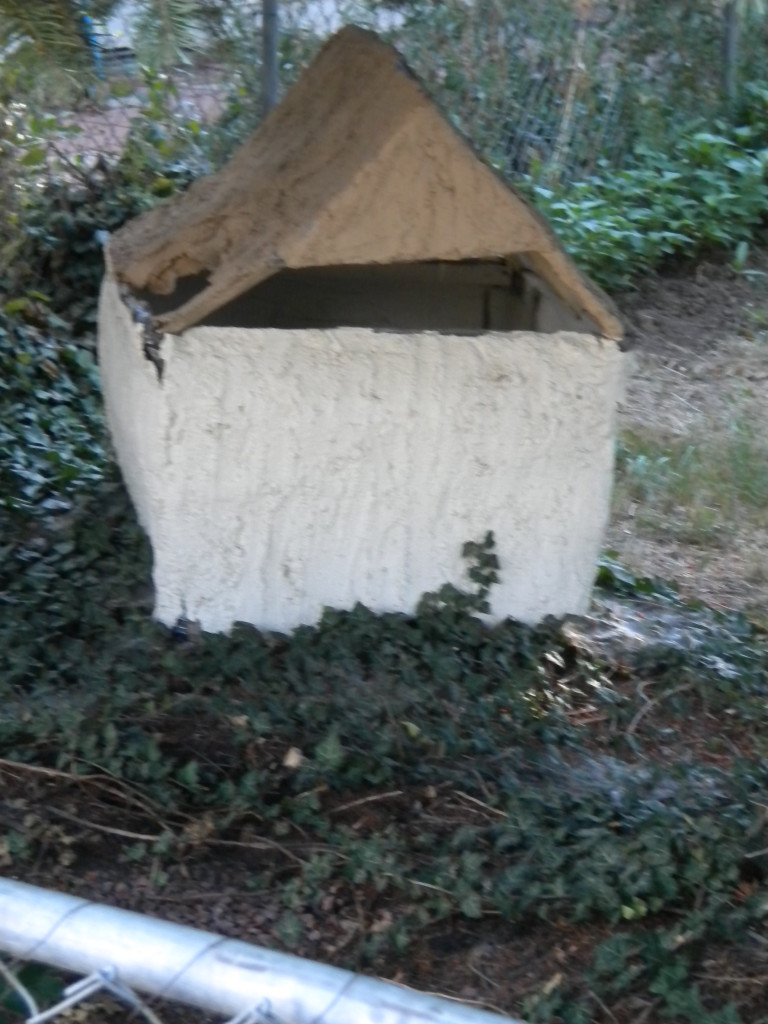 backyard (alley) adobe house?