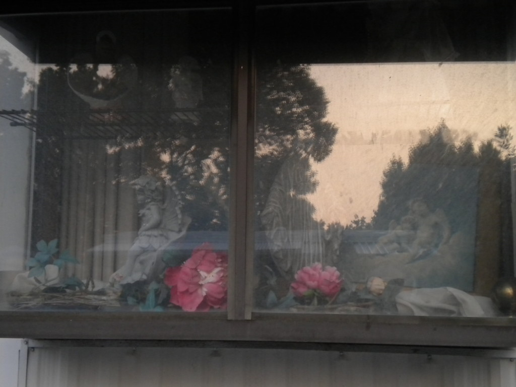 I really like this window box --- sorry about the glare