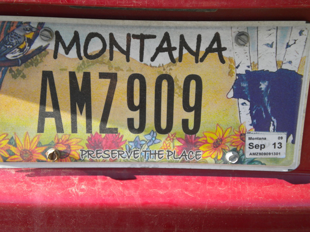another Montana plate