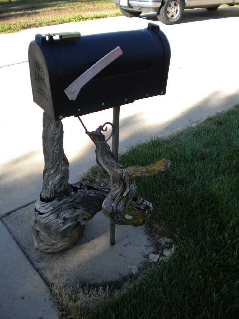 driftwood mailbox (notice it curls around the post)