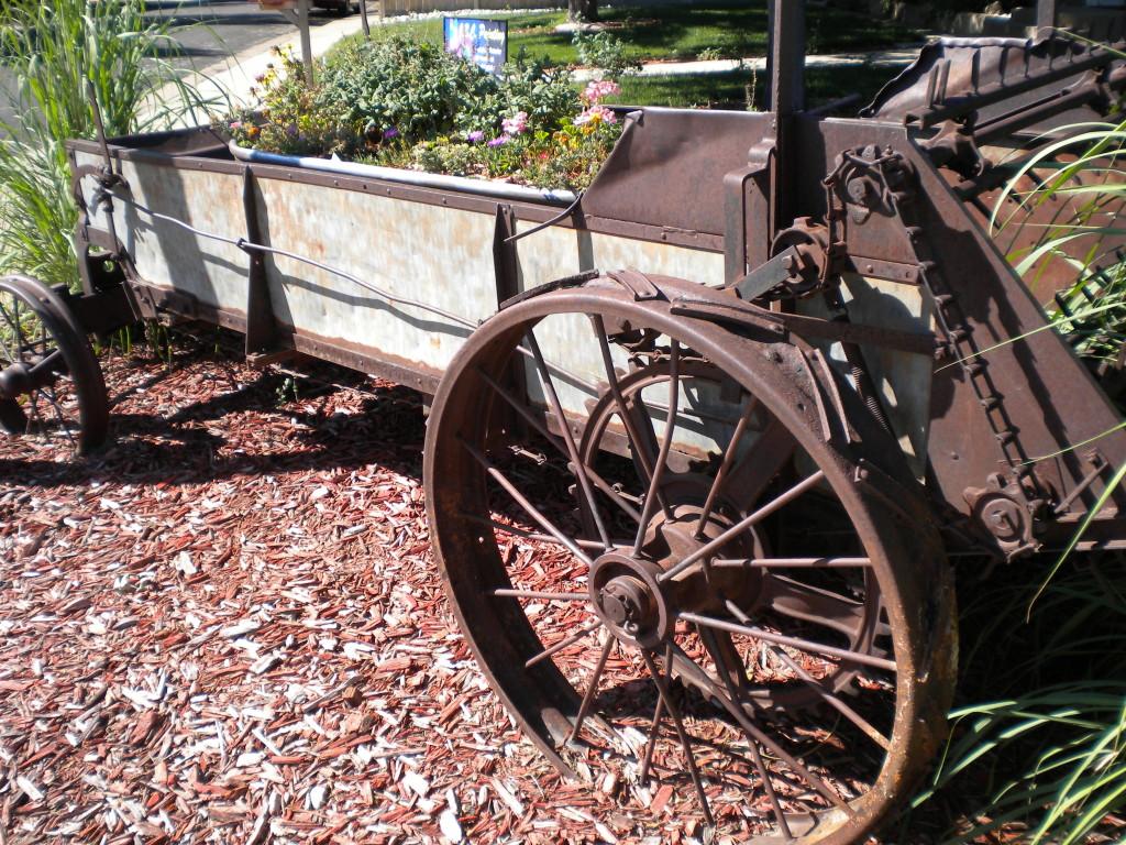 front yard wagon