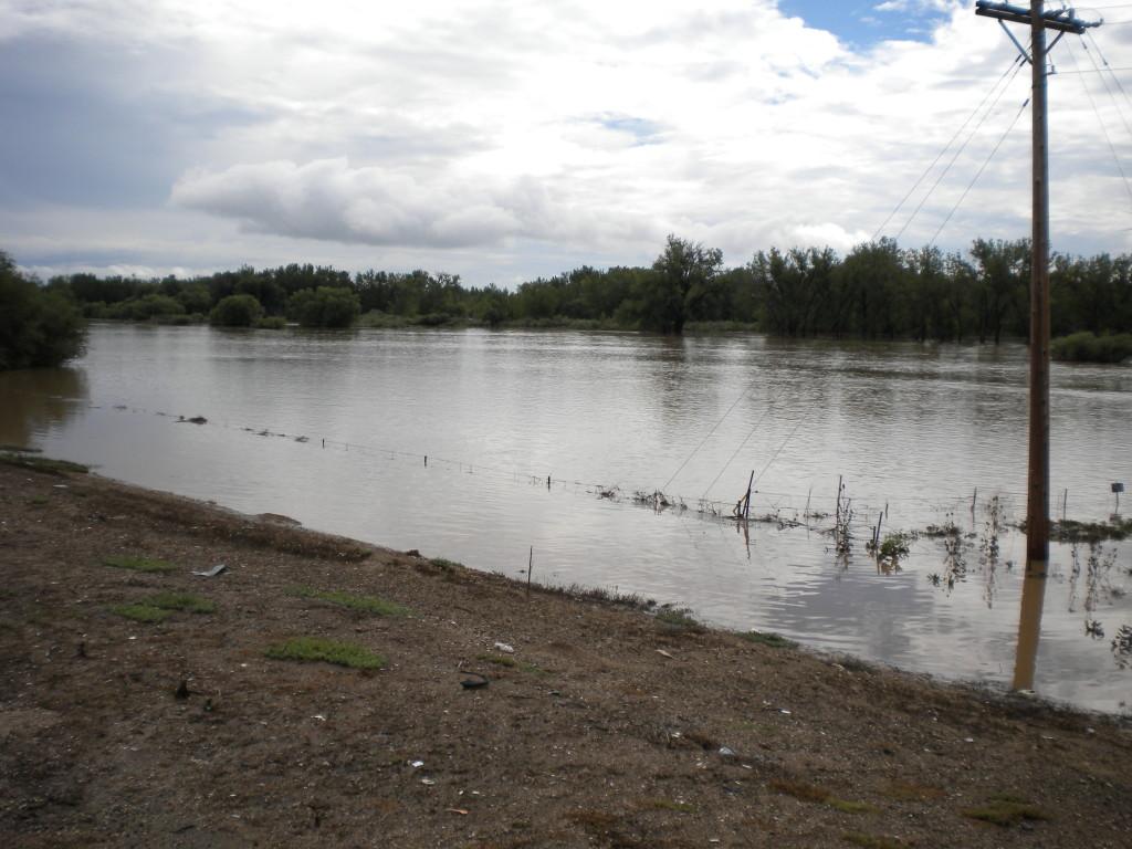 FloodSouthOldTownKensington 034