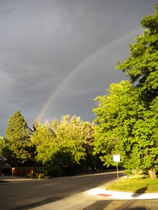 rainbow at the end of my walk