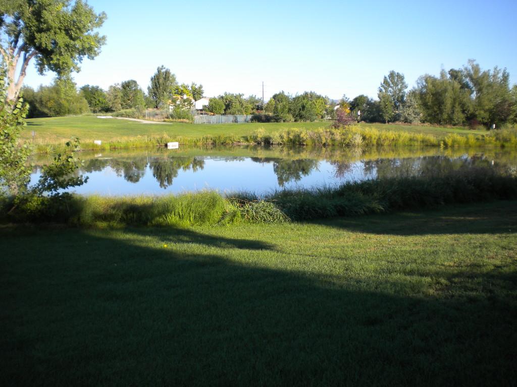 pond in the NE corner