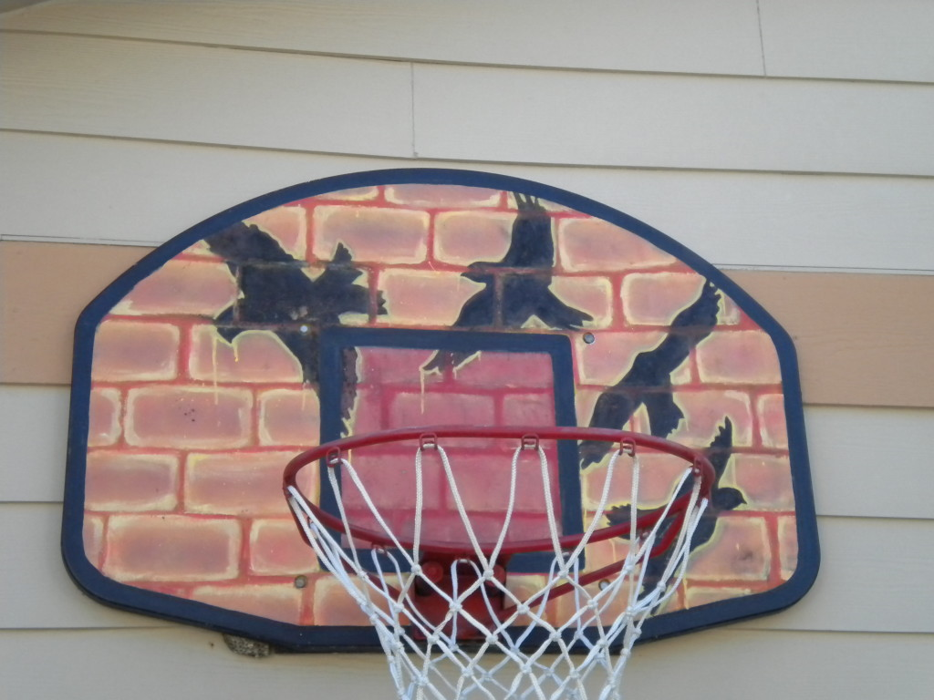 Raven basketball