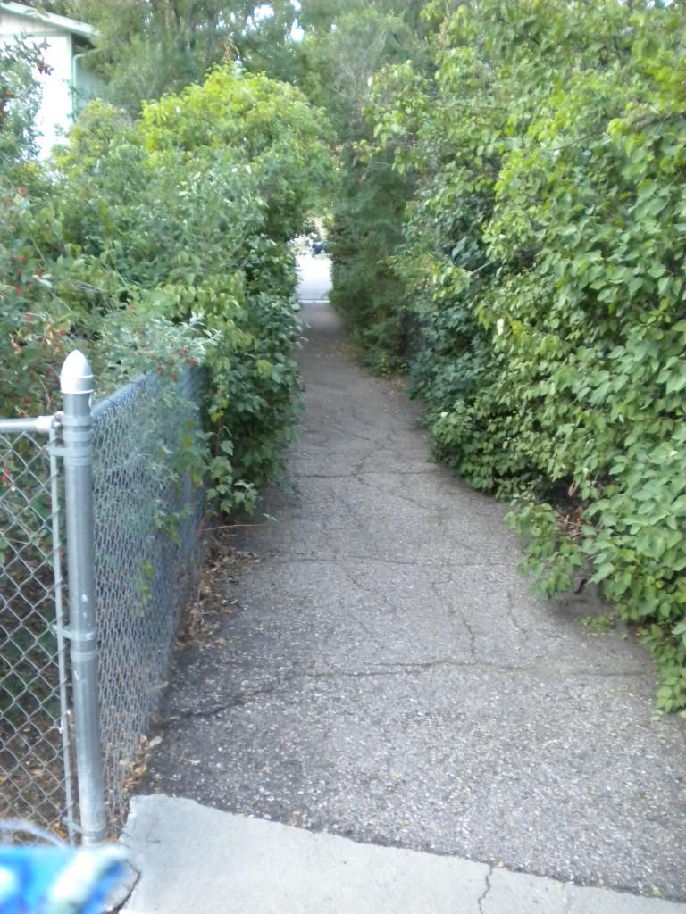 scenic walkway # 1