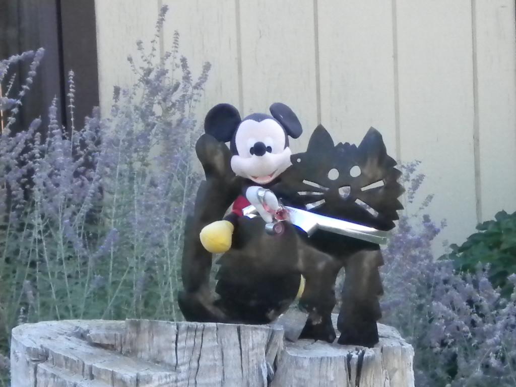 Mickey w/ Black Cat