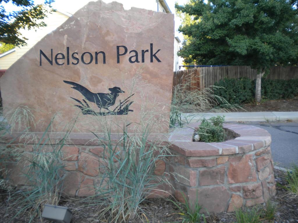 Nelson Park neighborhood