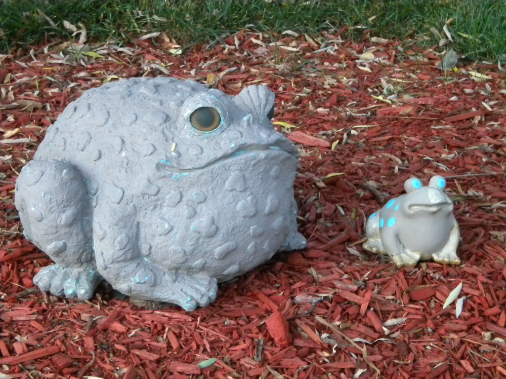 grumpy toad and cheerful frog