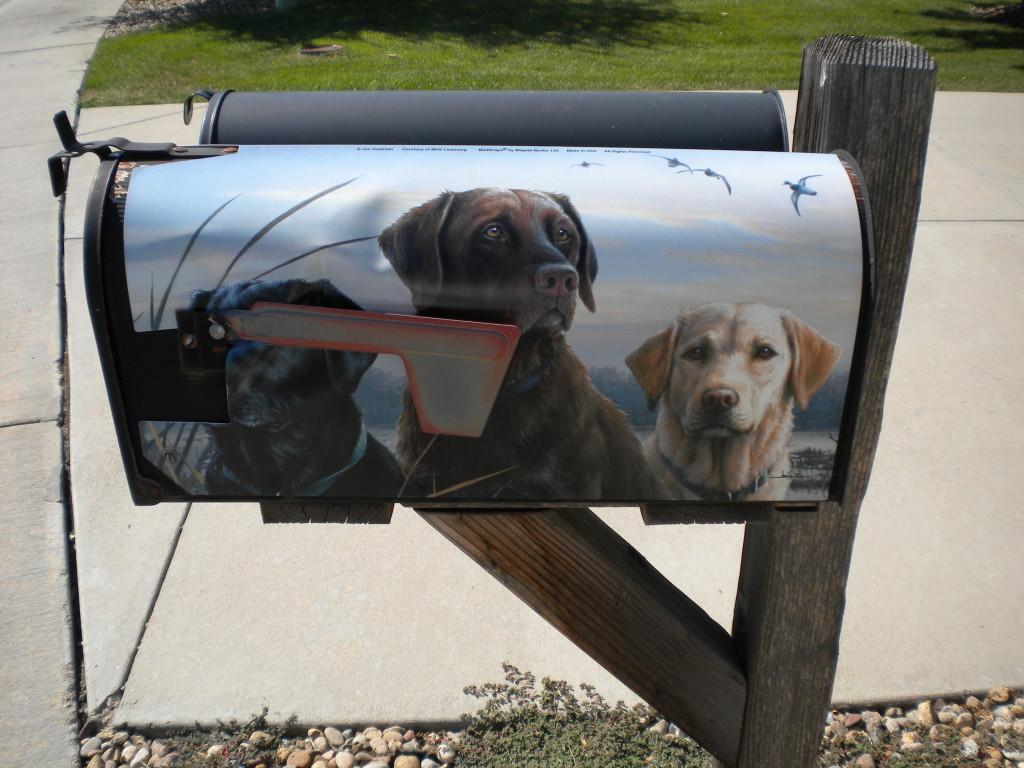 dog mailbox