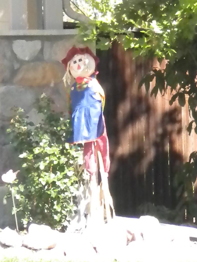 Lady scarecrow # 1