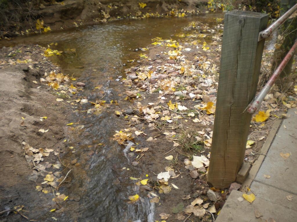 Creek at the trailhead