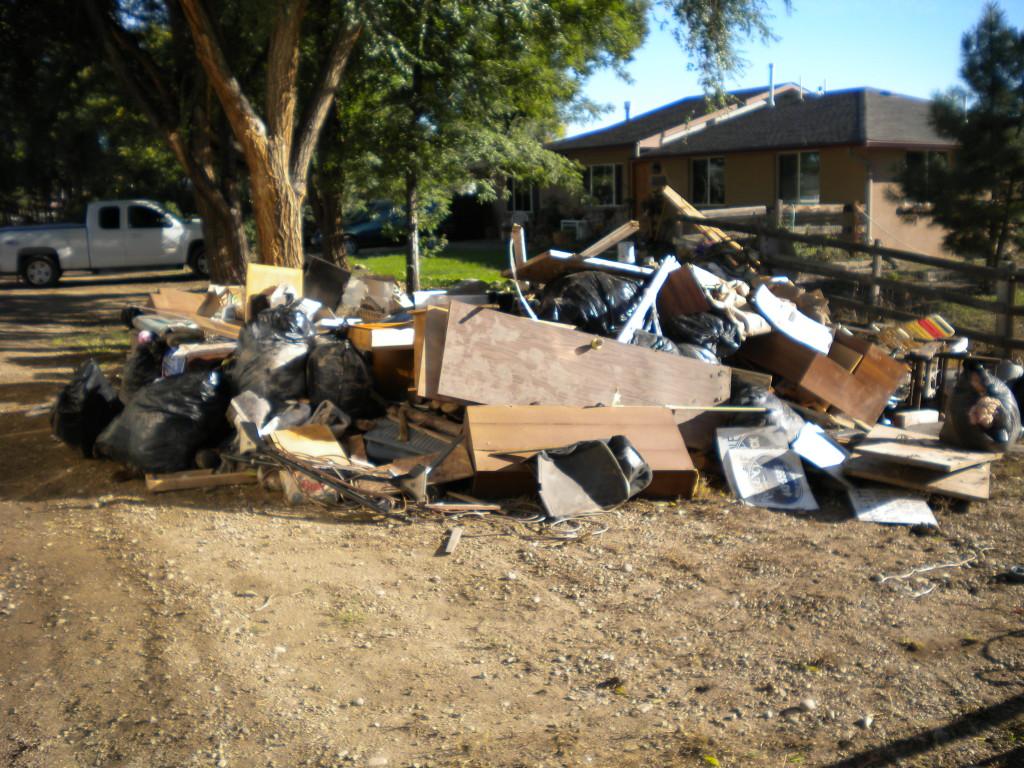 trash on Fordham 2