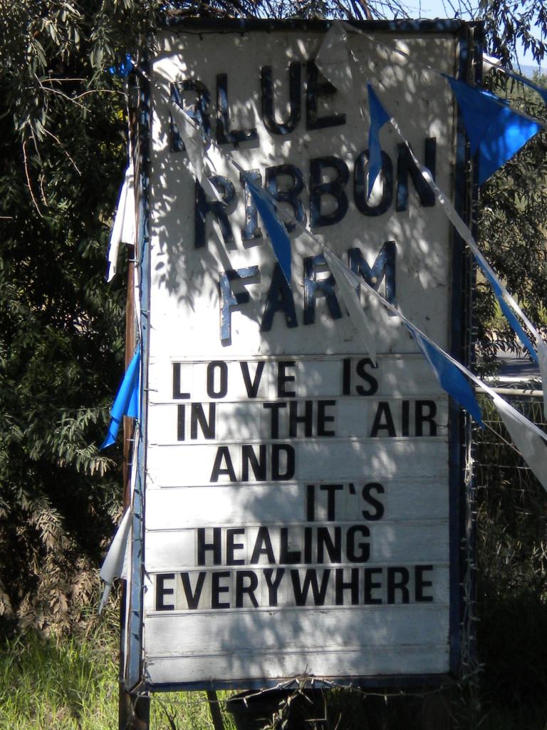 Healing sentiment