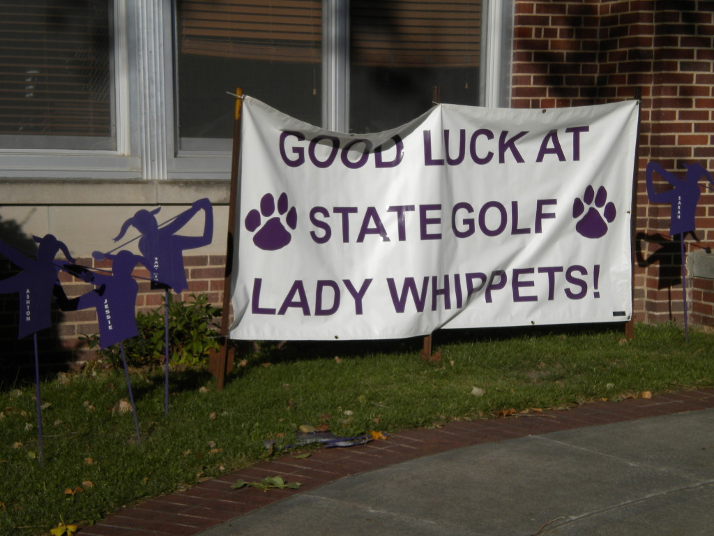 Lady Golfers go to State!