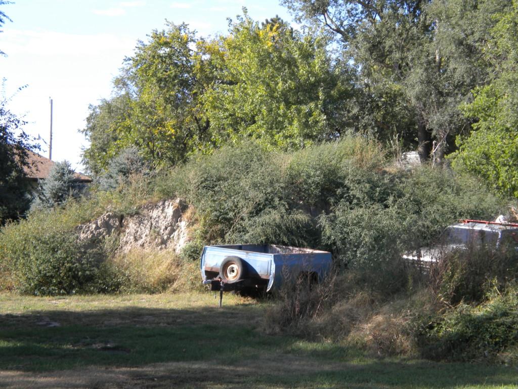 wild Minden # 2 ---  mound of dirt