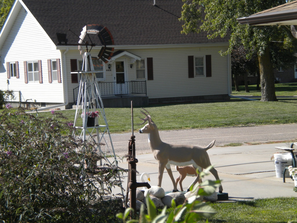 deer and windmill