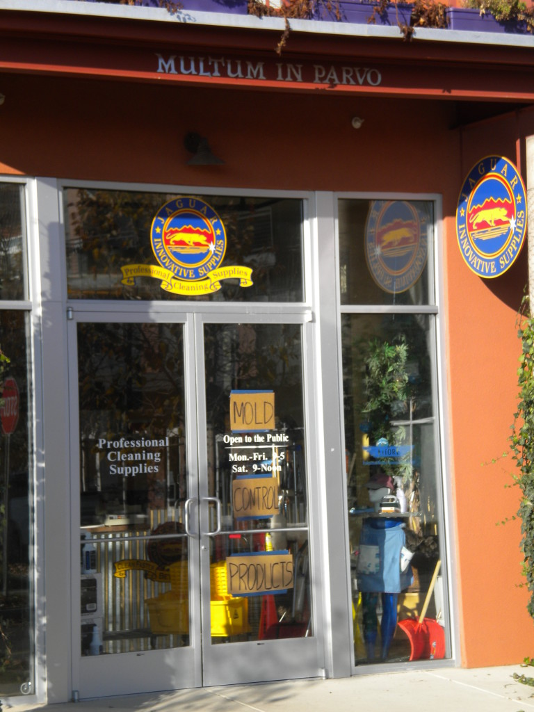 Multum in Parvo --- Much in Little