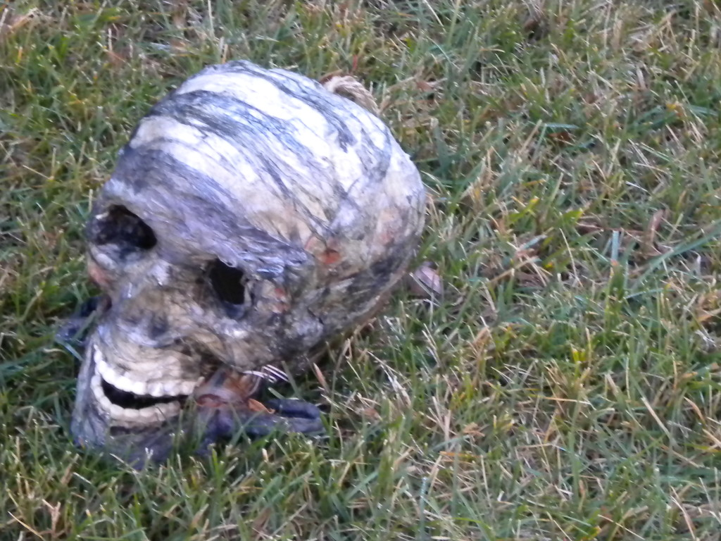 skull with combover