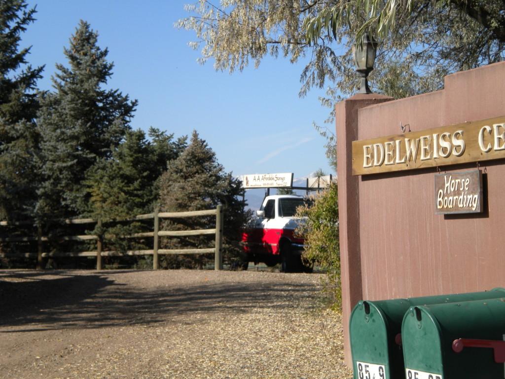 Edelweiss horse boarding