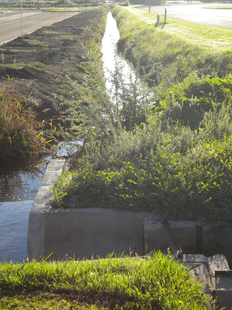 Wiswall ditch