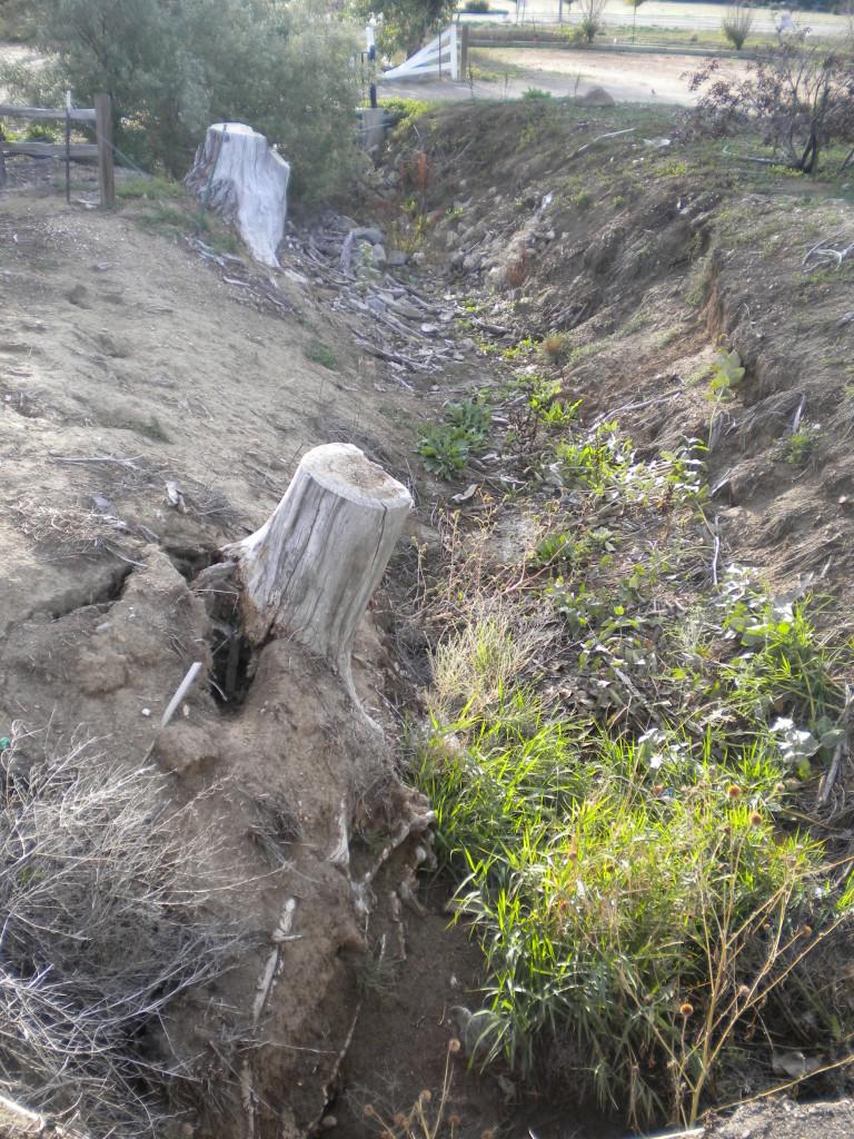 gully gulch