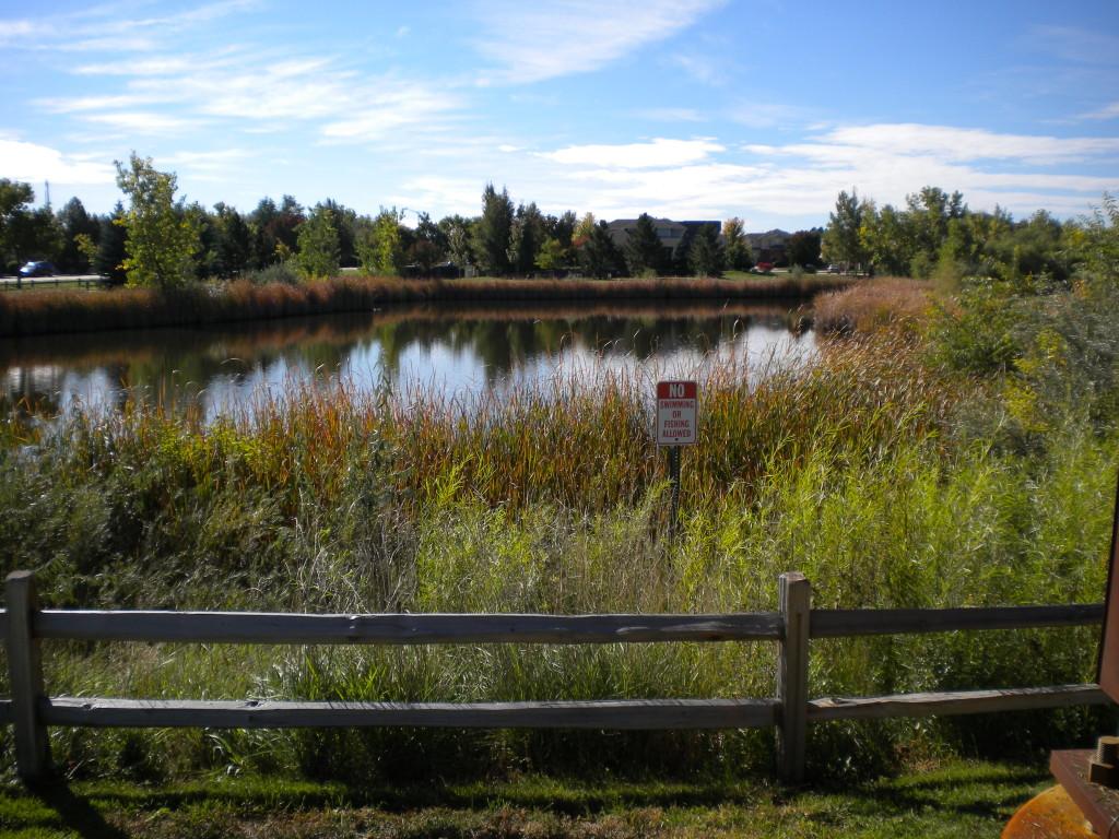Lake Jervis (an inside family joke about a pet)