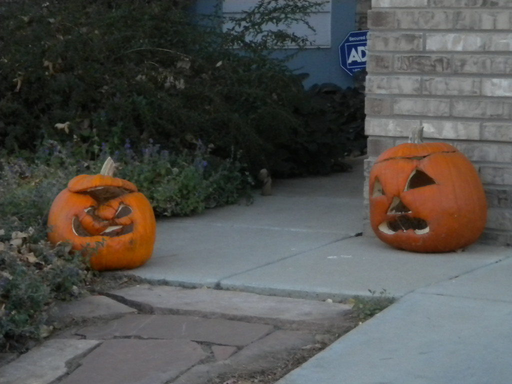 the jack o' lanterns get scarier as they start to decompose