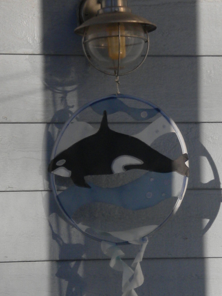 orca?
