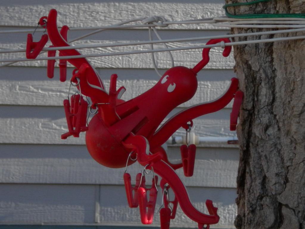Clothesline Octopus (Jefferson Starship had a 1975 album 'Red Octopus')