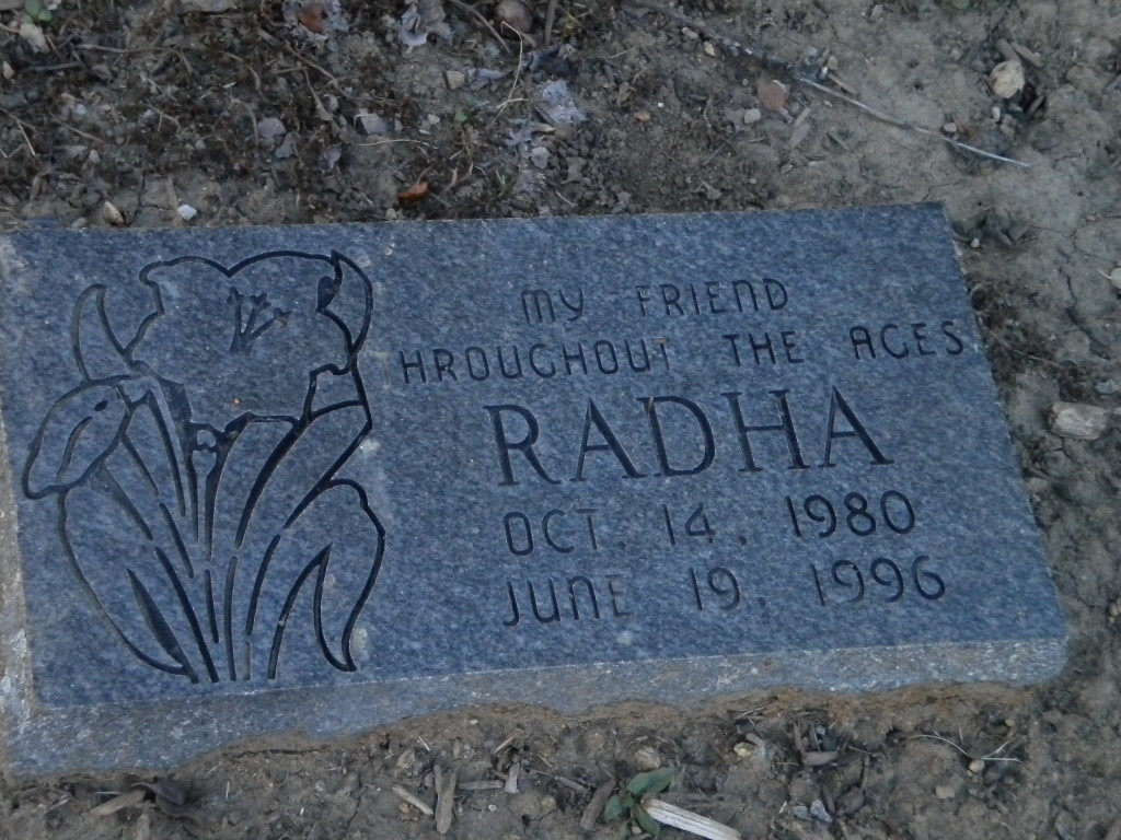 backyard marker --- a departed pet?